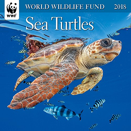 Sea Turtles WWF Mini Wall Calendar 2018