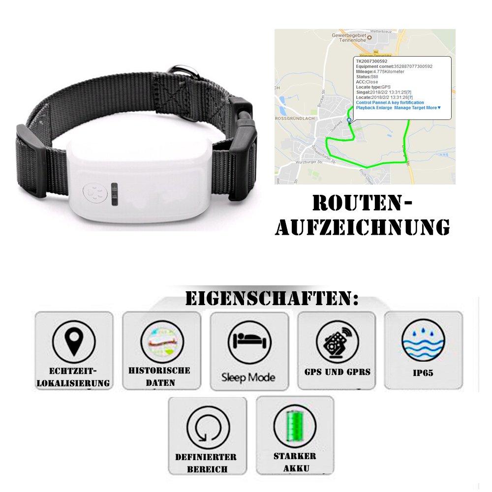 eyeCam EC53GPS Rastreador peil emisor Personas y animales GPS Transmisor de tiempo real Localización GPS Tracker para animales niños ancianos Función SMS GPRS coche con onlinetracking