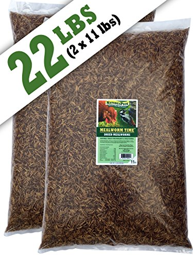 NaturesPeck Mealworm Time Dried Mealworms (22 lbs)Non-GMO by NaturesPeck®