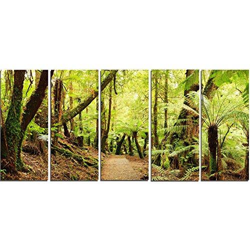 Landscape Panorama (Designart Rainforest Panorama Landscape-Photo Metal Wall Art-MT7141-60x28-5 Panels, 28'' Hx60'' Wx1'' D 5PE)