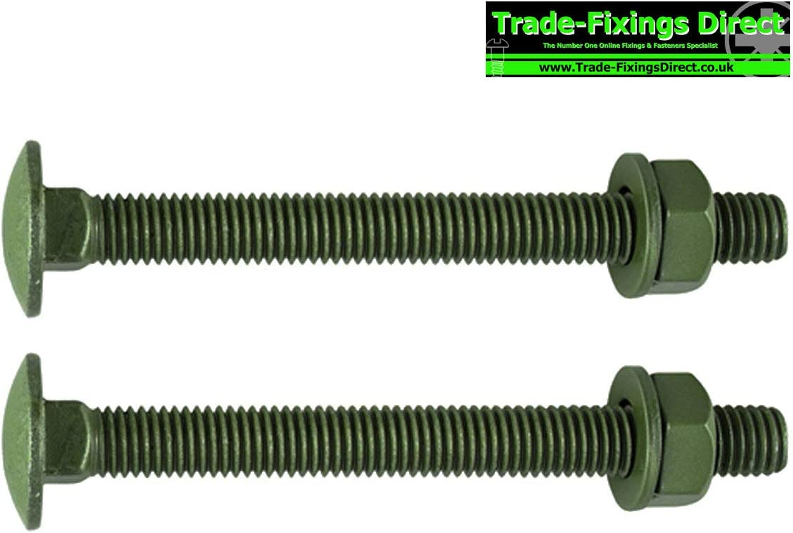 TIMCO M10 x 160mm Carriage Bolts Exterior Green Coated - 10160INCB Pack of 10 - Complete with Nuts /& Washers
