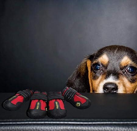 QNMM Botas Impermeables para Perros, Zapatos para Correr al Aire ...