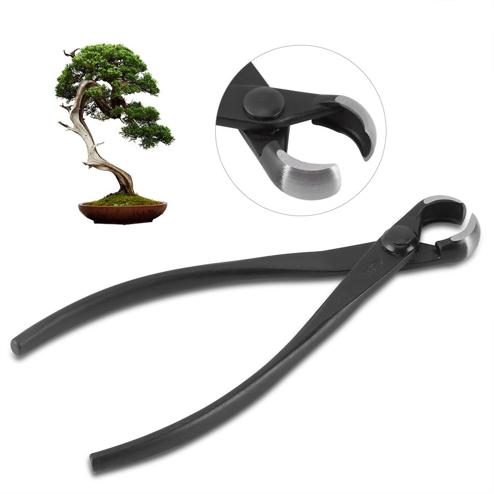 Zerone Bonsai Cutter, Hot Professional Round Edge Knob Branch Cutter Concave Bonsai Tools With Manganese Steel Alloy for Decorating Garden