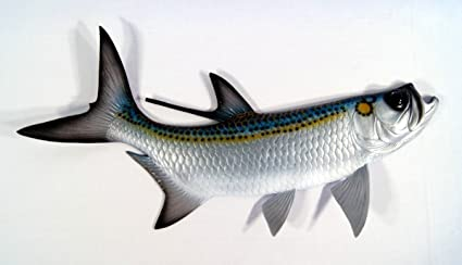 Superior Charlotte International Replica Tarpon Saltwater Game Ocean Fish Wall Decor  28 Inch