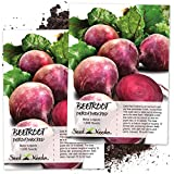 Seed Needs, Detroit Dark Red Beet (Beta vulgaris) Twin Pack of 1,000 Seeds Each Non-GMO