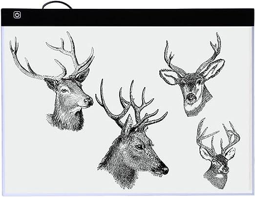 Caja de Luz para Calcar Everpert Tableta de la Plantilla de Trazado de Dibujo para Animacion Tatoo Dibuja: Amazon.es: Hogar