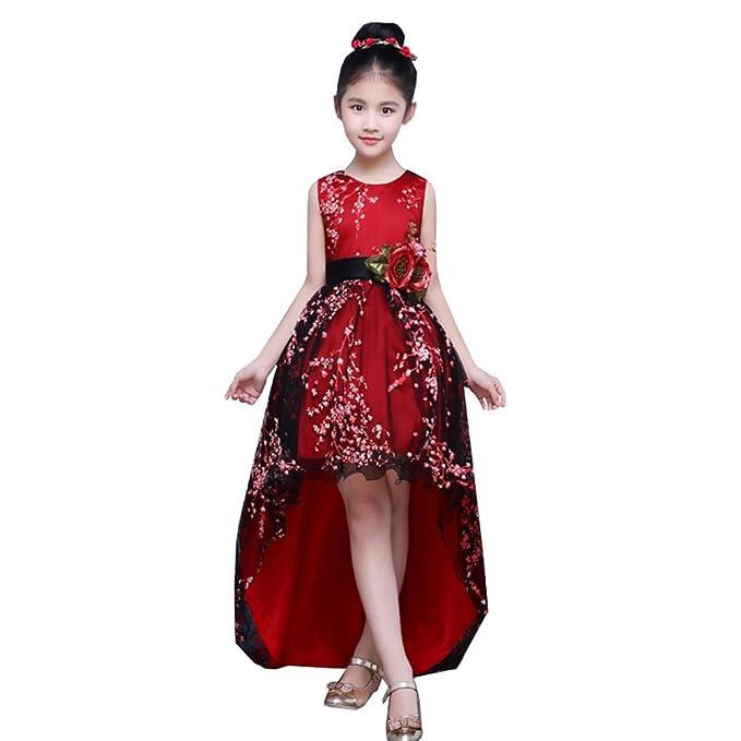 2c1e5cddc9 LSERVER Elegante Vestido Nina de Boda para presentacion o Ceremonia con  Encaje y 3D Flores