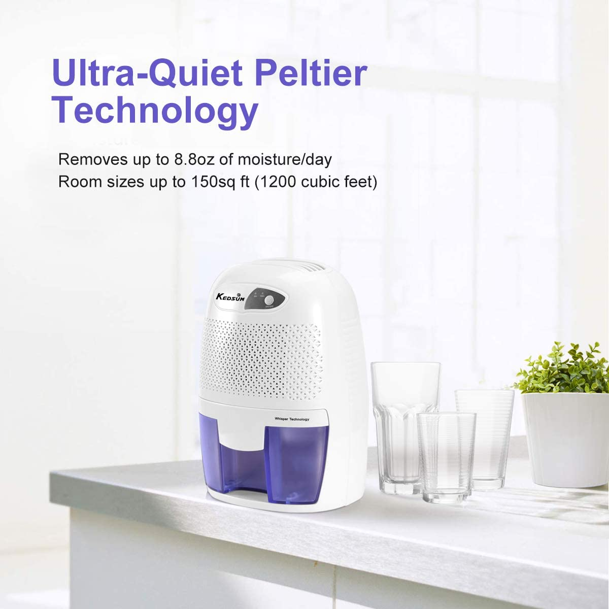 Quietly Extracts Moisture hOmeLabs Small Space Dehumidifier with Auto Shut-Off