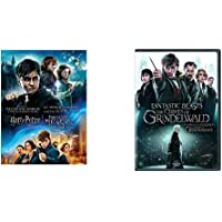 Wizarding World 9-Film Collection + Fantastic Beasts: The Crimes of Grindelwald (DVD)