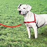 Dog Walk Training Harness Nylon Puppy Trainer 2 Colors To Choose