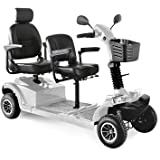 Easy Move mobility 2-seater handicapped mobility scooter