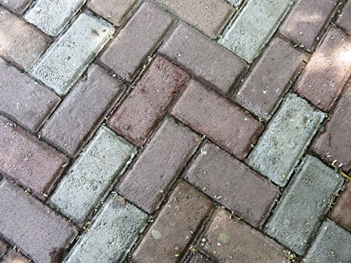 Patio Brick Pattern - Home Comforts Peel-n-Stick Poster of Patio Architecture Texture Brick Pattern Floor Poster 24x16 Adhesive Sticker Poster Print