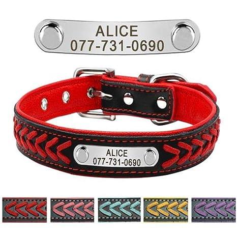 PENVEAT Collar para Perro Personalizado, Collar con Placa de ...
