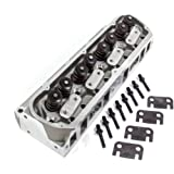 Amazon com: TRICK FLOW Twisted Wedge Aluminum Cylinder Head SBF EACH