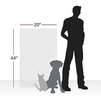 XuBa - Almohadilla Protectora para Mascotas, Gatos, Perros, arañazos, para Puertas, Muebles, sofás, Almohadillas antiarañazos: Amazon.es: Hogar