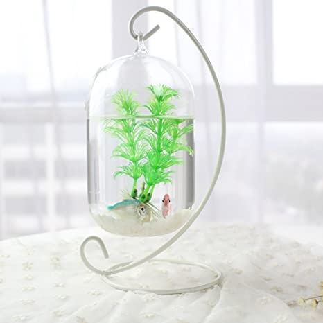 Mishiner Acuarios cuelgan Vidrio de Vidrio borosilicato Mini florero de Cristal Tanque de Peces decoración del