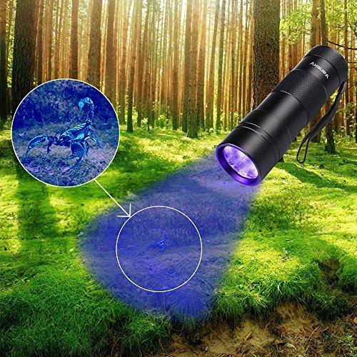 Large Product Image of Black Light UV Flashlight UV Light,Vansky Blacklight 12 LED Ultraviolet Urine Detector For Dog/Cat/Pet Urine & Dry Stains and Bed Bug On Carpets/Rugs/Floor,Matching with Pet Odor Eliminator
