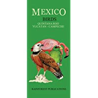 Mexico Caribbean Regions Birds Guide (Laminated Foldout Pocket Field Guide) (English and Spanish Edition)