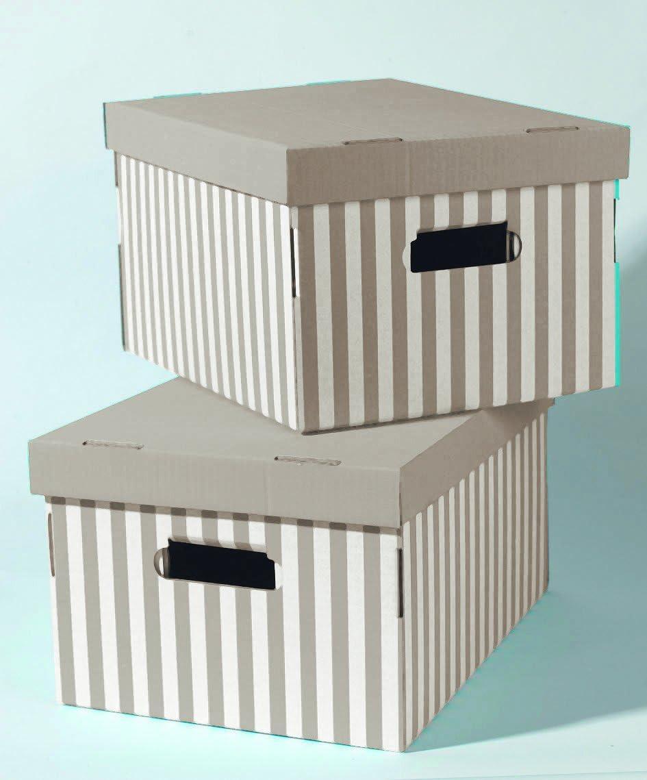 Compactor - Set de 2 Cajas « Shirt », taupe: Amazon.es: Hogar