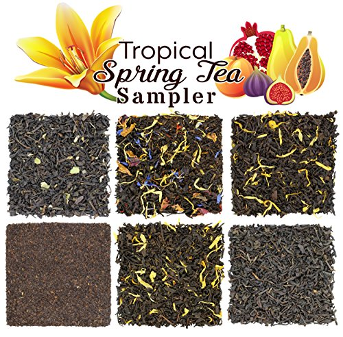 Tropical Spring Fruit Tea Sampler, Refreshing Loose Leaf Tea Assortment Featuring Mango, Apricot, Tropic Flower, Paradise, Black Currant, Vanilla Black Teas - Approx. 90+ Cups