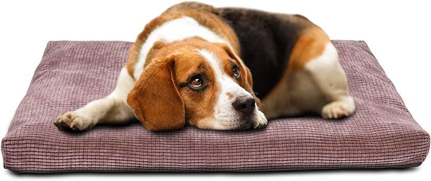 Amazon.com: Invenho - Cama para perro, cómoda, suave ...