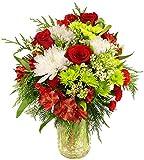 Kyпить Benchmark Bouquets 'Tis the Season, With Vase на Amazon.com