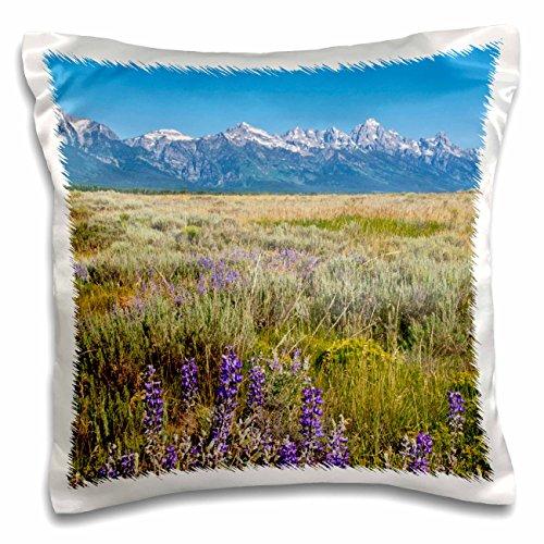 3dRose Grand Tetons Mountain Range, Jackson Hole, Wyoming-Us51 Bba0022-Bill Bachmann-Pillow Case, 16 by 16