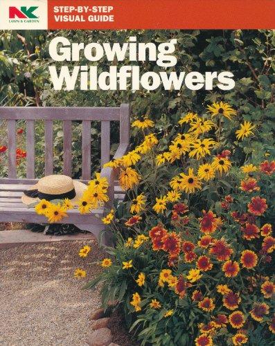 Growing Wildflowers (Step-by-Step Visual Guide) - Growing Wildflower