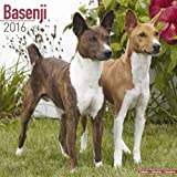 Basenji Calendar - Breed Specific Basenjis Calendar - 2016 Wall calendars - Dog Calendars - Monthly Wall Calendar by Avonside