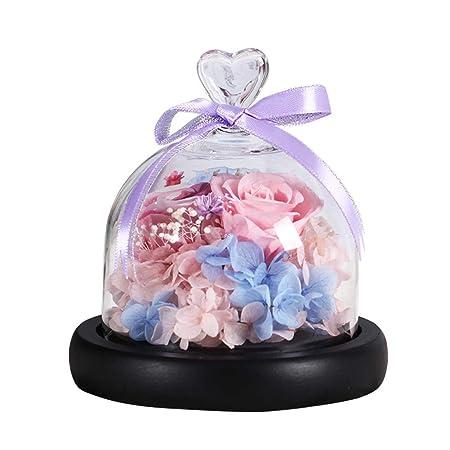 JHNEA La Bella Y La Bestia Rosa Cristal, Enchanted Rose Kit ...