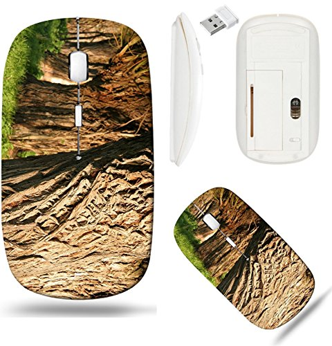 (Liili Wireless Mouse White Base Travel 2.4G Wireless Mice with USB Receiver, Click with 1000 DPI for notebook, pc, laptop, computer, mac book willow tree Image ID 22779084)
