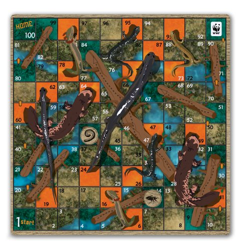 wildlife board game instructions - 4