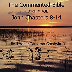 The Commented Bible: Book 43B - John Audiobook
