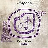 Fallen Gods/Cidar by Rapoon (2003-11-24)