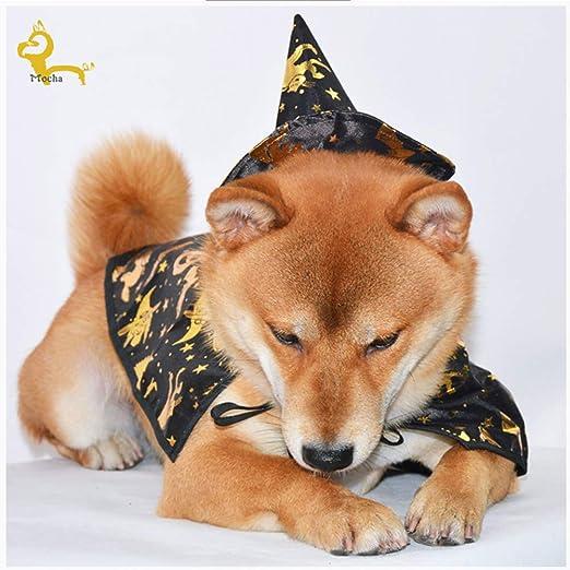 Perro Disfraz De Halloween, Capa De Mago con Gorro Traje De ...