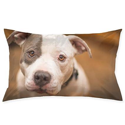 Amazon.com  Ministoeb Pillow Case 20