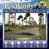 It's Windy!
