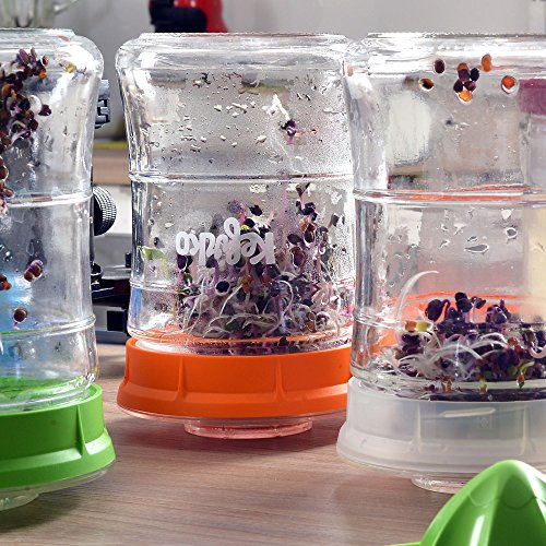 KEFIRKO - Homemade milk and water kefir system, as seen on Kickstarter by Kefirko (Image #8)