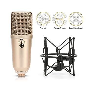 Amazon Debra Audio U60 Three Polar Patterns 60mm Large Interesting Microphone Patterns