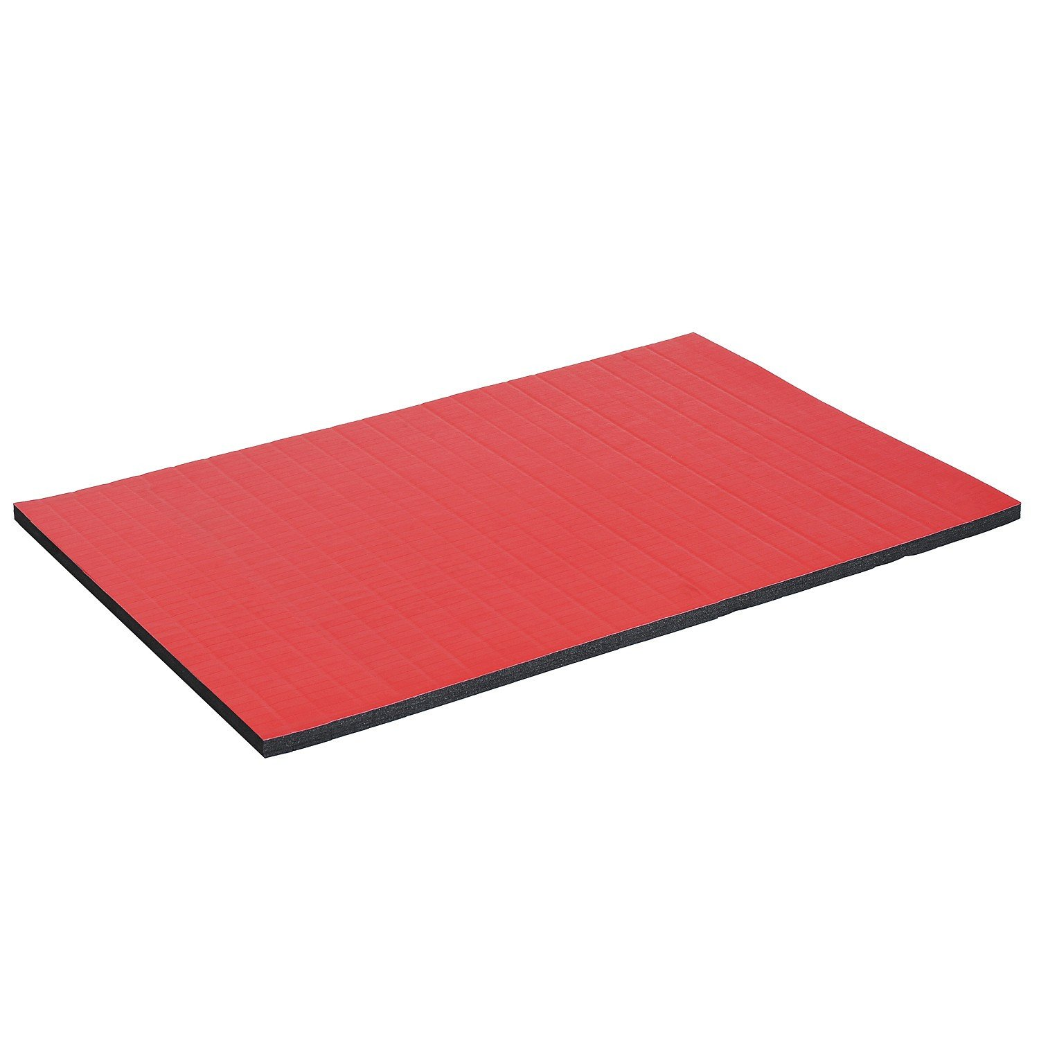 Multi-Use Yoga Wrestling Mat 6'x4' Roll Out Gymnastics Cheerleading Tumbling Gym Mat With Ebook by MRT SUPPLY