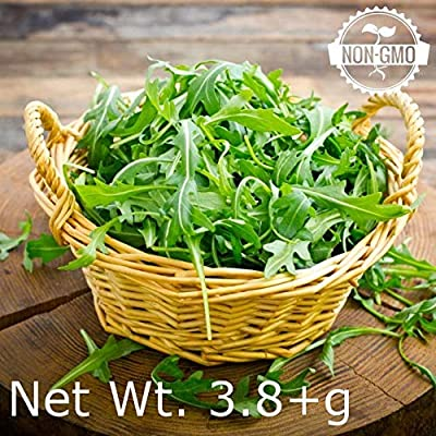 Gaea's Blessing Seeds - Organic Arugula Seeds 2000+ Non-GMO Heirloom Rocket 90% Germination Rate, Net Wt. 3.8g : Garden & Outdoor