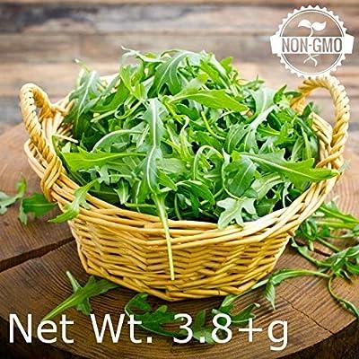 Gaea's Blessing Seeds - Organic Arugula Seeds 2000+ Non-GMO Heirloom Rocket 90% Germination Rate, Net Wt. 3.8g : Garden & Outdoor