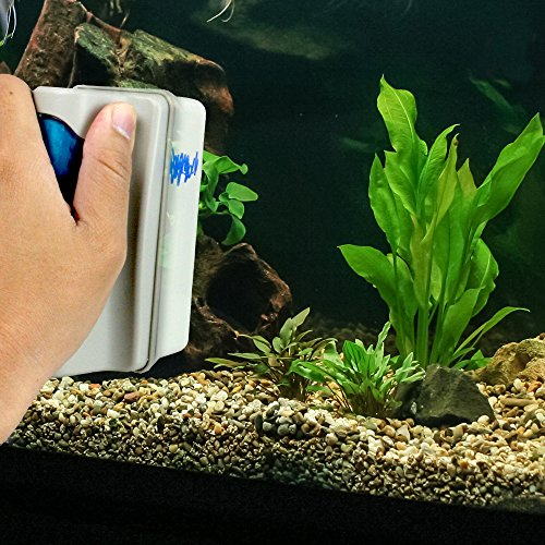 Magnetic aquarium glass cleaner aquatic float magnet to for How to remove algae from fish tank glass