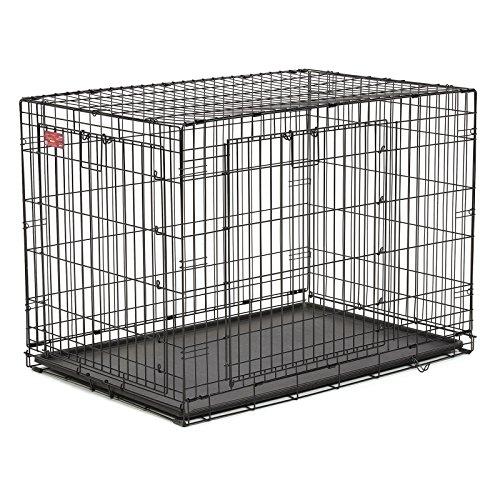 Midwest ace double door dog crate woof meow wow for Double door with dog door