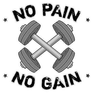 Pegatina de pared Motivo con mancuernas y letras No pain No gain motivo deportivo para pegar gimnasio estudio de fitness sala de fitness XXL: Amazon.es: ...