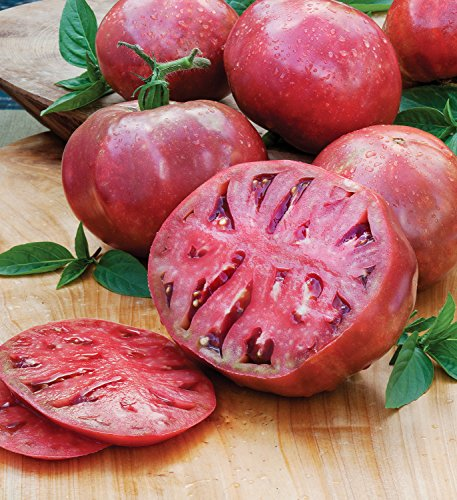 Bonnie Plants Cherokee Purple Heirloom Tomato (4 Pack) Live Plants by Bonnie Plants (Image #5)