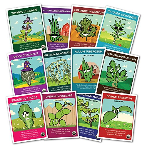 100% CERTIFIED ORGANIC NON-GMO Culinary Herb Set - 12 popular varieties of Easy-to Grow Organic Seeds - from a