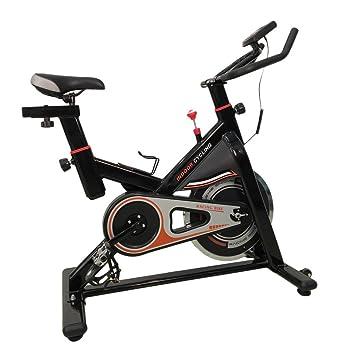 profesional Indoor Cycle bicicleta estática bicicleta elegir la ...