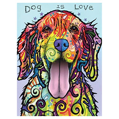 LIPHISFUN 5D DIY Diamond Painting Full Drill for Adults Resin Square Rhinestones Patsed Unfinished Cross Stitch Home Decor Best Gift Colourful Golden Retriever 30x40cm ()