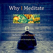 Why I Meditate: Reflections of a Neural Surfer Audiobook by David Christopher Lane Narrated by Paul Brion